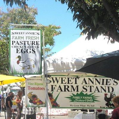 Mountain View Farmers Market, Mountain View, CA