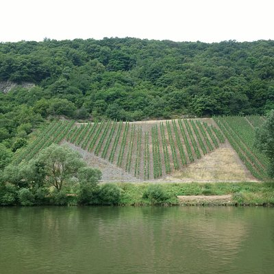 Mosel bei Trier