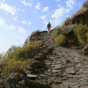 Red de senderos de La Palma | La Palma, Spain