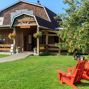 Do a self-guided tour around the grounds and our full cider apple orchard. Lots to see...