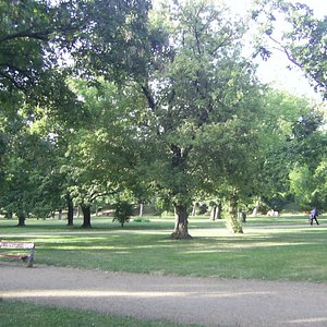 En park på Buda-siden som anbefales.