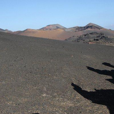 Balade en dromadaire au milieu des volcans