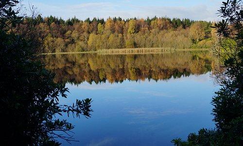 The Moor Loch