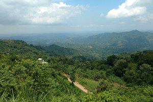 Vista Cerro La Cansona