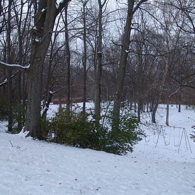 In the winter the park offers a winter beauty seldom found within a city limits.