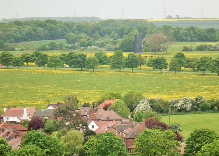 Looking out over the Westwood with Black Mill