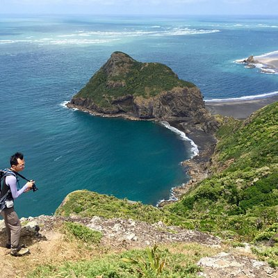 Overlooking Whatipu beach