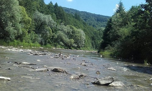 Fajne miejsce na odpoczynek dużo zieleni spokuj cisza tylko rzeki Las wakacje udane w katach