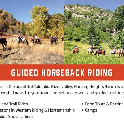 Guided Horseback and trail Rides