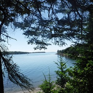 View at Owls Head State Park