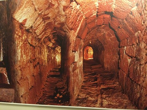 Plumbing service tunnels