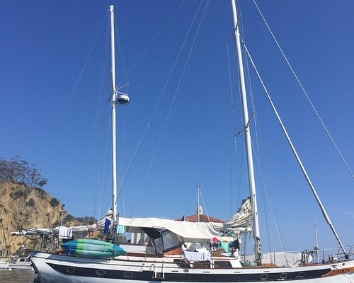 Siren sailing carter taken with my family in July 2016. LA to Catalina Island over 2 and a half