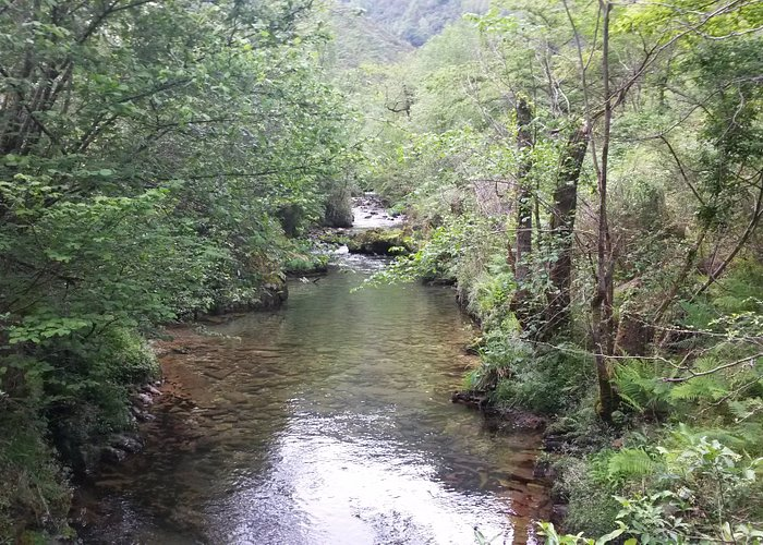 Rio Purón