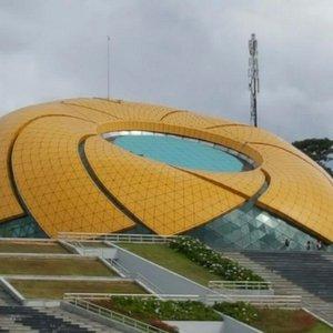 巨型太陽花