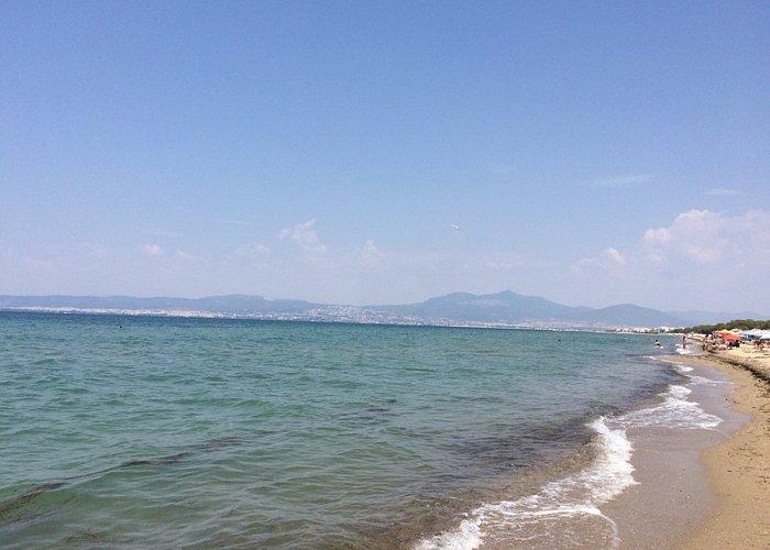 Пляж не совсем чистый. Много мусора вокруг. Песок в окурках. Много бездомных собак. Бегают по пл