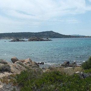 spiaggia del cardellino, panorama