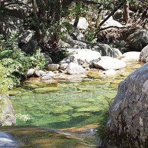 piscine naturelle polischellu