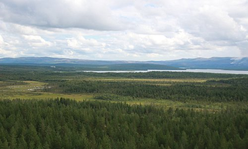 View toward the Russian border. The river divides the border between Norway and Russia in the no