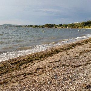 La plage des Marettes, not a place I would go swimming!!!!