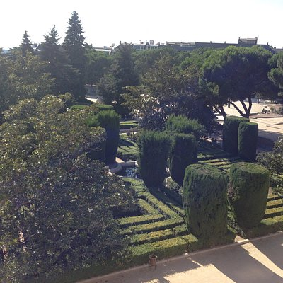 A garden near the palace
