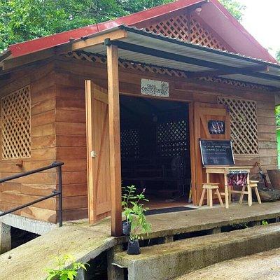 Casa Cecropia-Tortuguero Cacao Tour