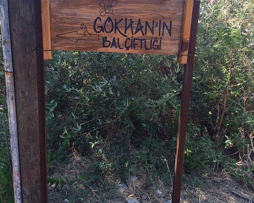 Eski Bademli köyüne geldiğinizde tabelalar sizi karşılıyor, çiftlik girişinde köpek var ama kork
