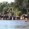 Top 10 Multi-day Tours in Lusaka Province, Lusaka Province