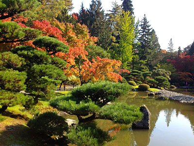 Autumn at the Japanese garden