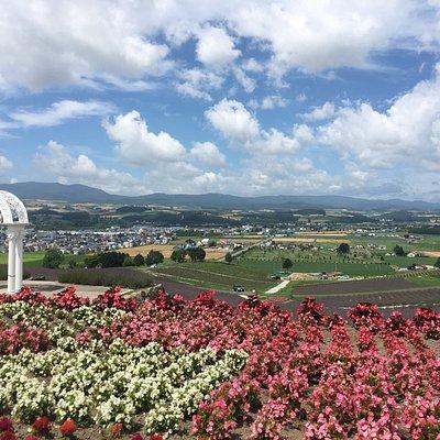大晴朗,山丘上看四周田園,太美麗了