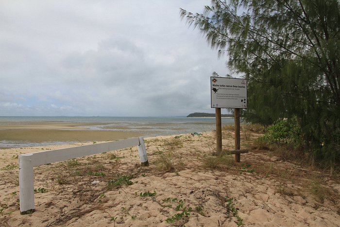 Mouth of the Jardine River