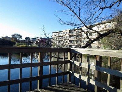 冬の今泉名水桜公園