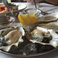 Oysters from the raw bar