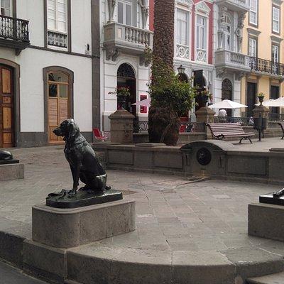 Los Perros de La Plaza de Santa Ana, ноябрь 2015 года...