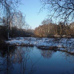 winter wonderland in the Baardwijkse Overlaat with the lake
