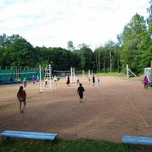 Bach volleyball fields