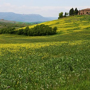 Tuscany Travel – Among Florence, Siena and Arezzo, situated in the hills you will find the beaut