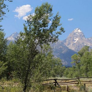 Menor's Historical Trail - A view from Maud's cabin