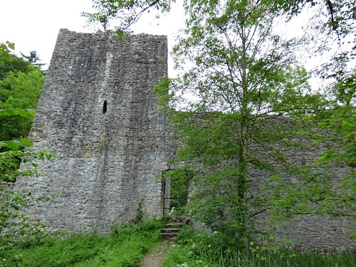 Castle in the nature reserve