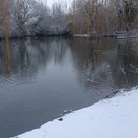 Black dam ponds, still looks beautiful in the winter