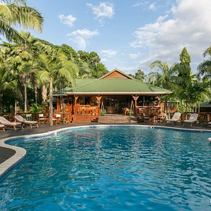 The Pool at the Le Jardin des Palmes