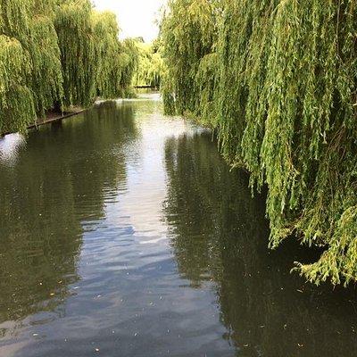 Wardown Park Lake, Luton