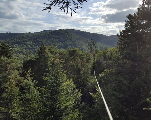 View from the top of one of the highest ziplines