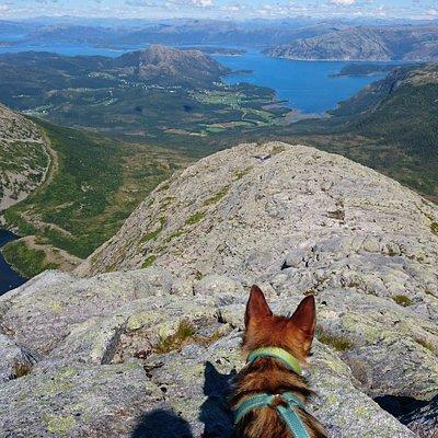 View of Bindalseidet, and Bindalsfjorden