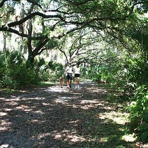 Oak Hammock Park Trails, Boat Ramp, Picnic Areas, Kids Play Area Too