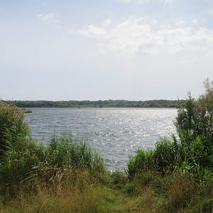 View towards Poole across the lake