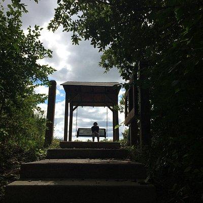 Swinging riverside at Strawtown Koteewi Park