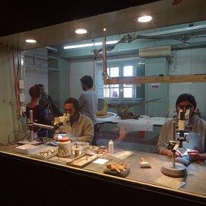 arqueólogos en pleno trabajo