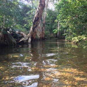 WaterPark creek