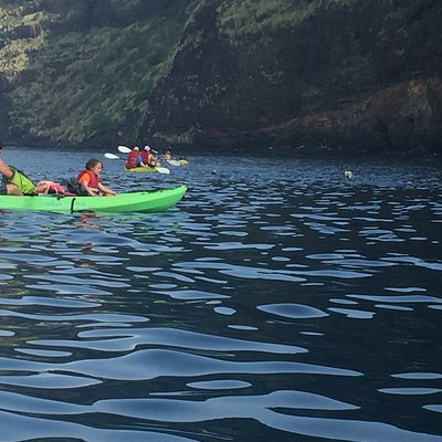Amazing kayaking day with Rocky at Bayside asventureS! We swam with dolphins, snorkeled the bay,