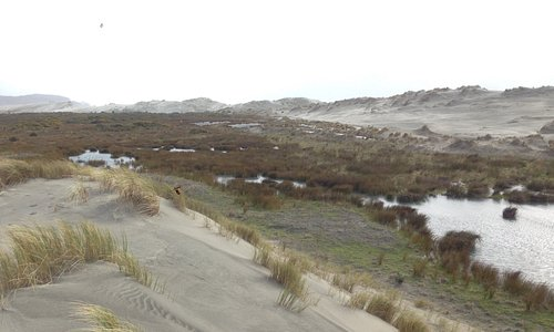 In between the front and back dunes